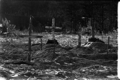Фотография 1991 года из архива А.Ф.Сухановского